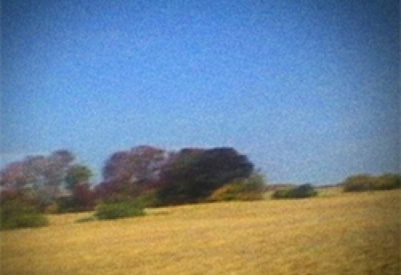 https://www.pbsfm.org.au/sites/default/files/images/sunkilmoon.jpg